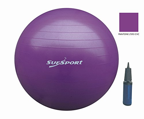 SUESPORT 1000lbs Static Strength Anti-Burst Exercise Ball Kit With Pump, Diameter 26