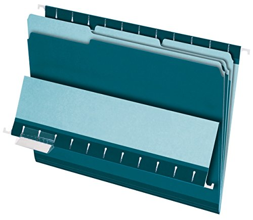 Pendaflex Interior File Folders, 1/3 Cut, Top Tab, Letter Size, Teal, 100 per Box (4210 1/3 TEA)
