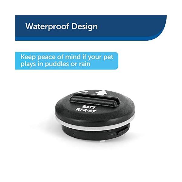 PetSafe RFA-67 6 Volt Replacement Batteries 5
