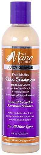 THE MANE CHOICE Juicy Orange Fruit Medley KIDS Shampoo - Detangle, Moisturize, and Nourish Your Hair (8 Ounces / 236 Milliliters)