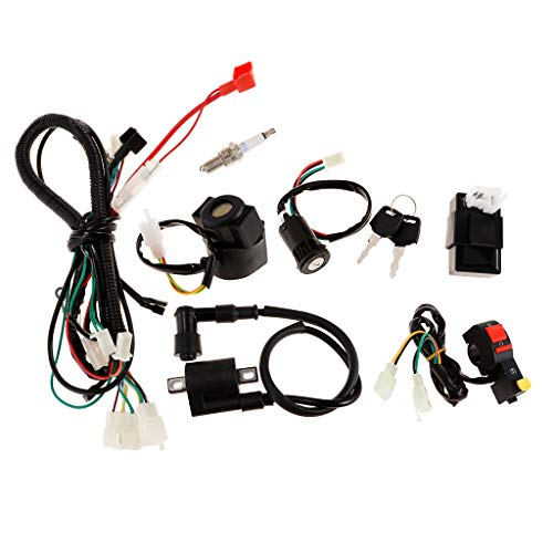 Shiwaki Electric Wiring Harness Wire Loom CDI Switch Assembly For ATV QUAD 150CC: