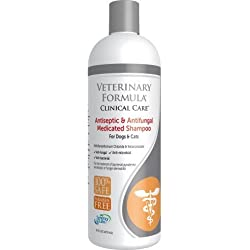 SynergyLabs Veterinary Formula Clinical Care Medicated Shampoo for Dogs & Cats Antiseptic & Antifungal, 16.0 FL OZ