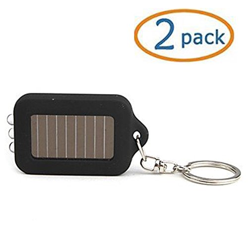41hlfX4w6sL - Black Solar-powered LED Flashlight Keychain Pack of 2