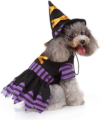 POPETPOP Disfraz de Bruja para Perros: Disfraces de Halloween para ...