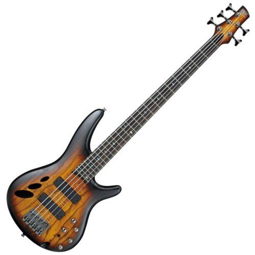 (Ibanez SR30TH5II SR 30th Anniversary 5-String Electric Bass Guitar Flat Dragon Eye)