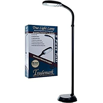 Trademark Global Classy, Modern 5\' Sunlight Floor Lamp (Black ...