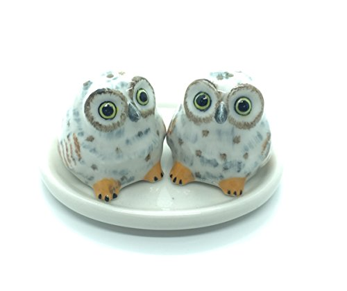 [Cute Small Ceramic White Owl Salt and Pepper Shakers Set Hand Painted] (Eggshell Costume For Adults)
