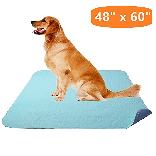 KOOLTAIL Washable Pee Pad for Dogs - 48