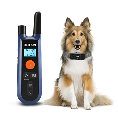 Dog Training Shock Collar w/Remote for Small Medium Large Dogs, 3 Training Mode, Beep, Vibration and Shock, Waterproof & Rechargeable Dog Training Set, 1000ft RC Range, 0~99 Shock LVs,45 Days Battery