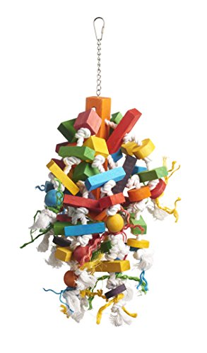 Prevue Pet Products 60962 Bodacious Bites Wizard Bird Toy, Multicolor