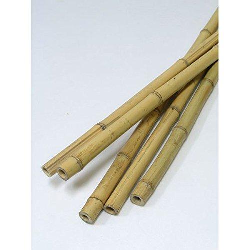 天然竹支柱 白竹 長さ1.5m 50本セット [生垣支柱に!] ノーブランド品 B013ONO2DA