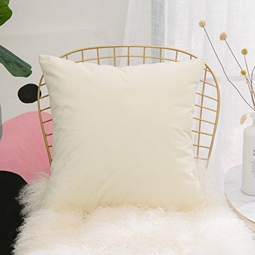 HOME BRILLIANT Soft Velvet Vintage Home Decor Decorative Spring Accent Pillow Cover, 18