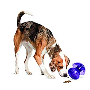 PetSafe Busy Buddy Magic Mushroom Meal-Dispensing Dog Toy, Use with Food or Treats