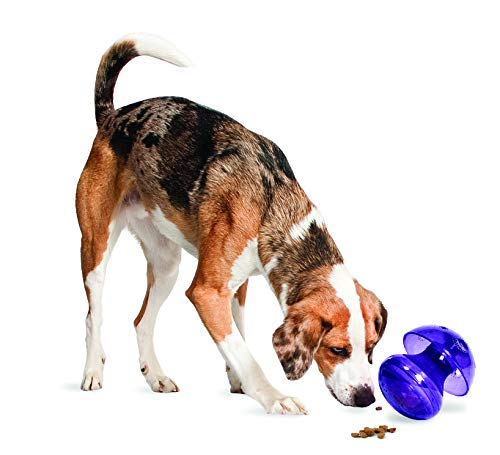 (PetSafe Busy Buddy Magic Mushroom Meal-Dispensing Dog Toy, Use with Food or Treats)