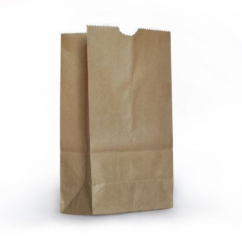 1 X Small Brown Paper Bags - 100 Pack