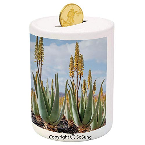 SoSung Plant Ceramic Piggy Bank,Photo from Aloe Vera Plantation Medicinal Leaves Remedy Fuerteventura Canary Islands Decorative 3D Printed Ceramic Coin Bank Money Box for Kids & Adults,Multicolor