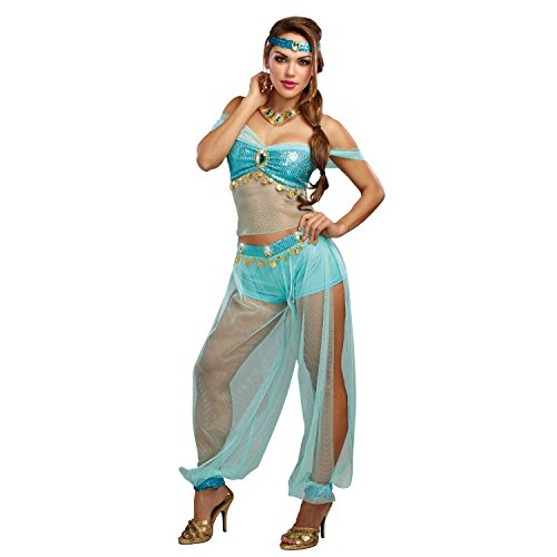 Dreamgirl Women's Harem Princess, Turquoise L ()