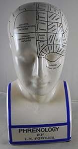 L.N. Fowler Phrenology Head Statue