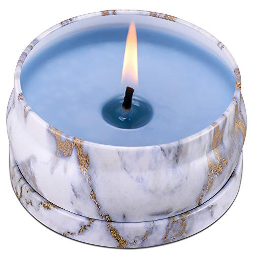 (8.1oz Scented Candles 45H Up Burning Time Big Travel Tin Soy Wax Candles to Create Mood & Enhance Atmospheres, Make Your Place Smell Really Good, Perfect for Stress Relief & Aromatherapy (Eucalyptus))