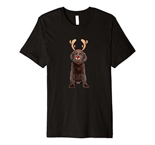 Mens Chocolate Lab Puppy Christmas Reindeer Costume T-Shirt Medium (Chocolate Lab Costumes)