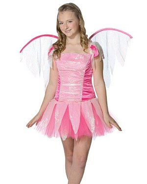 Teen Fantasy Fairy Costume - Teen Size 12-16 (Costume Imposta Rasta Fairy)