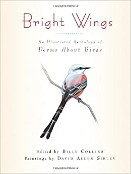 Amazon.com: Bright Wings: An Illustrated Anthology of Poems About ...
