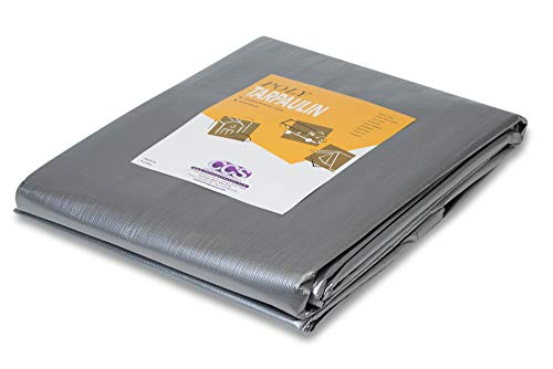 Heavy Duty Silver Poly Tarp (20 feet x 30 feet)