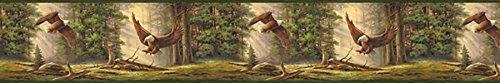 Chesapeake TLL50081B Houghton Eagles Wallpaper Border, ()