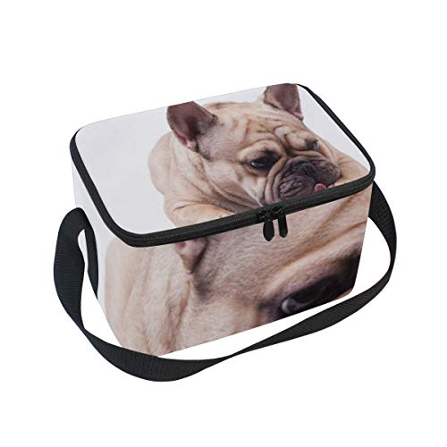 - SLHFPX Lunch Tote Brown French Bulldog Mens Insulated Lunch Bag Zipper Kids Lunch Box