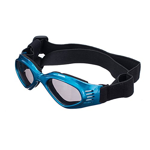The 8 best dog goggles clear