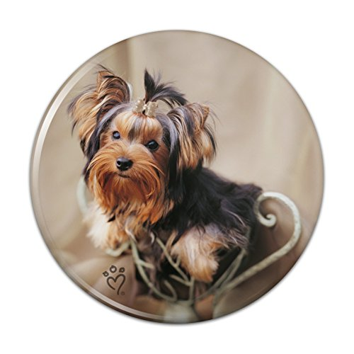 Yorkie Yorkshire Terrier Puppy Dog Satin and Bow Pinback Button Pin Badge - 1