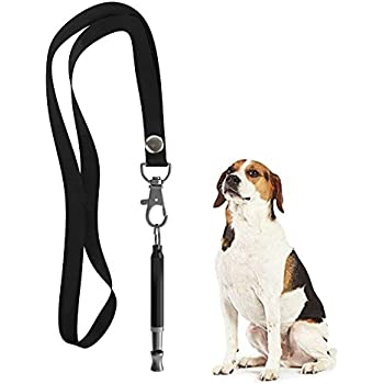 Amazon.com : SportDOG Brand The Answer Whistle : Dog
