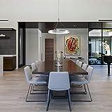light fixtures ceiling kitchen - EverFlowery Modern Pendant Light, Mini Ceiling Mounted Living Room Light, Led Hanging Light Fixture,Adjustable Height Pendant Lighting for Kitchen Island, Dining Room, Bedroom, 15W, Cool White=6500K