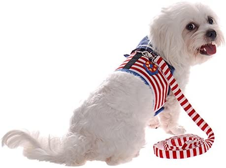Arnés de seguridad para perro pequeño o cachorro de algodón ...
