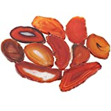 SUNYIK Red Agate Slice Set, Geode Druzy Stone Slab Wholesale, 1''-3'' in Length, Pack of 15