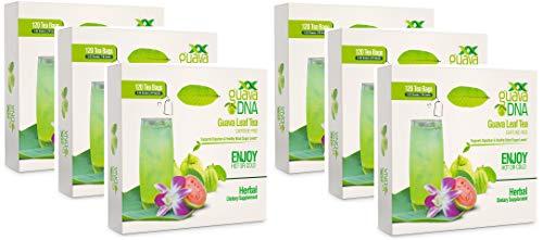 Guava Leaf Tea (720 Guava Leaf Tea Teabags) by MatchaDNA (Image #9)