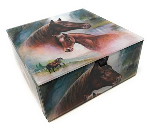 Value Arts Horse and Colt Jewelry Box, Beveled Glass, Lined with Velvet, 4.75 Inches Square
