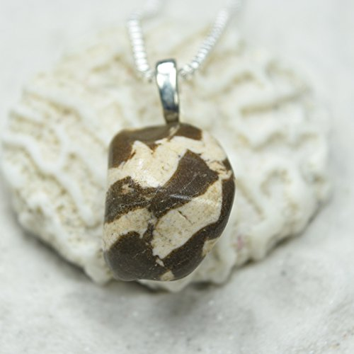 Zebra Jasper Necklace - 9