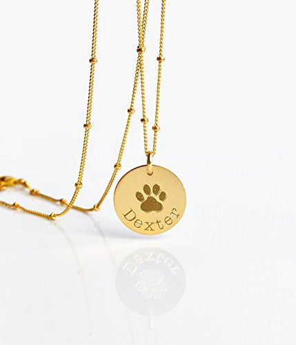 Personalized Paw Print Necklace, Pet Memory Necklace, Dog or Cat Memorial (14k Print)