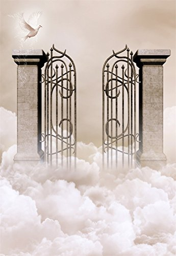 - Laeacco 5X7FT Vinyl Photography Background Holy Heaven Gate Dove White Cloud Magical Mystery Children Kids Adults Portraits Backdrop 1.5(W) X2.2(H) M Photo Studio Props