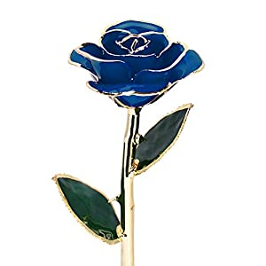 Ejoyous Gold Dipped Roses 24K Gold Rose Forever Blooming Flowers Handmade Rose W/Gift Box, Rose Gift for Women Mother Wife Girlfriend Sister Grandma Girls on Birthday Anniversary Mother's Day 95