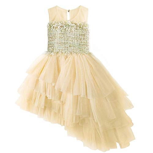 Tsyllyp Girls Princess Dress Flower Embroidery Beaded Party Ball Gowns Costumes with Bow]()