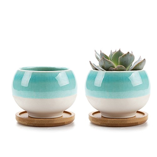GreenyLife Succulent Pots 3 inch Small Ceramic Ball Shape Cactus Planter for Terra Cotta with Bamboo Tray, Set of 2 Decorating Terra Cotta Pots
