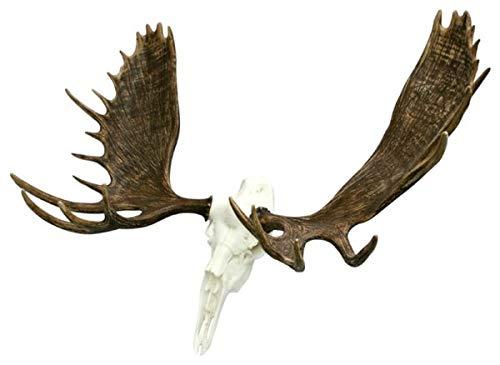 Cast Horn Designs European Faux Alaskan Moose Mount
