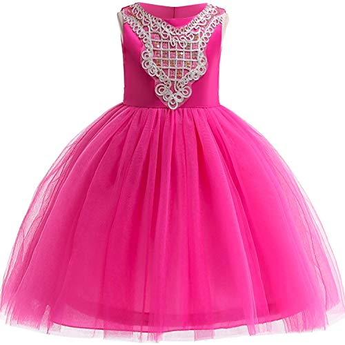 Baby Girls 3D Flower Embroidery Silk Princess Dress for Wedding Party Kids Dresses,Rose,7 ()