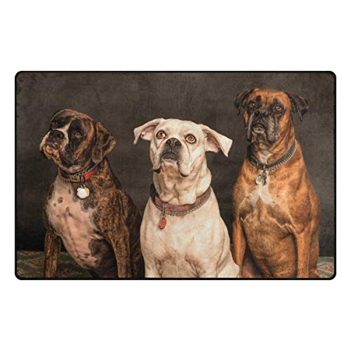 Boxer Door Mat - Florence Sitting Boxer Dogs Area Rug Non-Slip Doormats Carpet Floor Mat Living Room Bedroom 31 x 20 inches