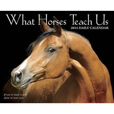 UPC 709786026647, What Horses Teach Us 2014 Box Calendar