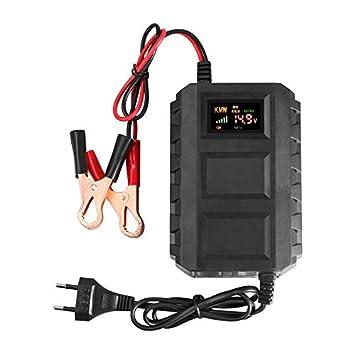 SODIAL Nuevo inteligente12V 10A Cargador de bateria acido de plomo del automovil coche motocicleta UE