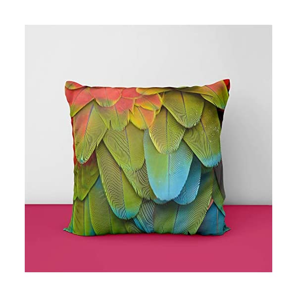 41hqOyb5ipL Fether Square Design Printed Cushion Cover