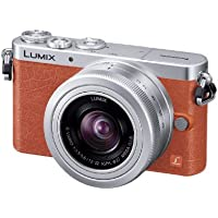 Panasonic Lumix digital camera DMC-GM1K-D SingleLens kit/orange - International Version (No Warranty)